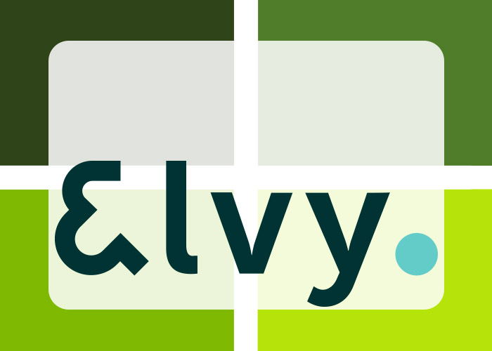 Elvy Productivity App