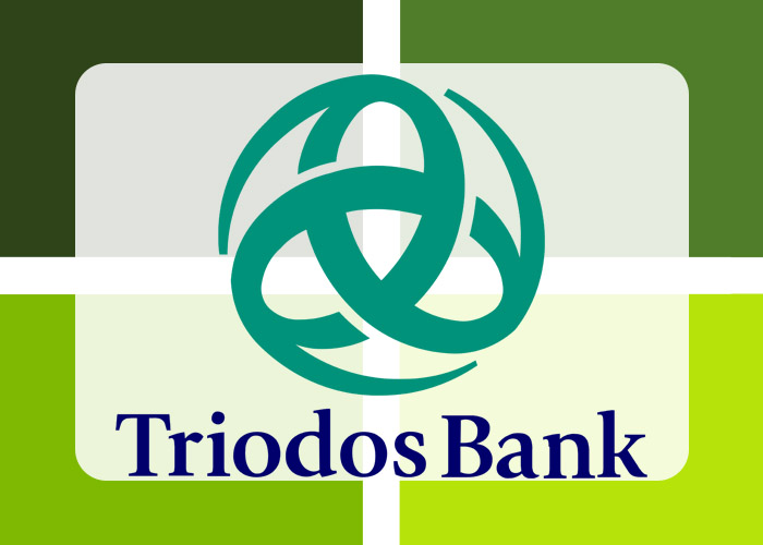 Triodos Bank Banking App for Microsoft Business Central